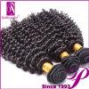 上10の販売人のアフリカのねじれた毛の織り方のインドのRemyの人間の毛髪