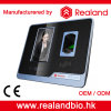 Realand biometrisches Gesicht entdecken Fingerabdruck-Zeit-Anwesenheit