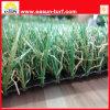 Alta calidad para la hierba artificial, césped sintetizado, hierba del balompié