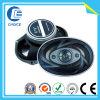 Дикторы автомобиля (CH70017)