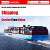 Porta ao transporte da porta de China a América (porta à porta)