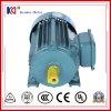Serien-elektrische Induktions-Motor des Roheisen-Y2