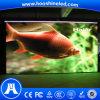 El buen vídeo permanente de la uniformidad P5 SMD3528 LED instala