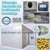 Прогулка изоляции PU high-density в холодной комнате для хранения фасоли