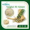 Выдержка завода 200:1 выдержки Tongkat Али травяная