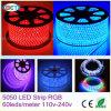 ETL 5050 유연한 RGB LED 지구 빛 밧줄 LED 리본