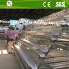 Il disegno della batteria un tipo gabbie del pollame per le galline ovaiole dell'uovo/pollo strato dell'uovo mette in gabbia