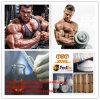 근육 성장을%s Bodybuilding 높은 순수성 Nandrolone Laurate Laurabolin CAS 26490-31-3