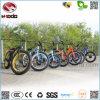 Bicicletta elettrica della bici di buona qualità con il motorino grasso della gomma