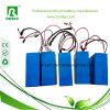 bateria do PVC Rechagreable de 36V 8ah para a E-Bicicleta com garantia 2years