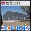 Atelier économique de structure métallique de conception de solution (SSW-300)