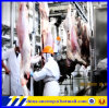 ヒツジの虐殺の屠殺場ライン食肉処理場の処理