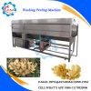 Große Kapazitäts-trommelartiger Ingwer-waschende Schalen-Maschine