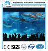 Reuze Aquariums/het Hangende Aquarium van de Muur/het Duidelijke Blad van het Perspex