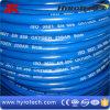 Tubo flessibile blu dell'ossigeno di colore