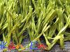 Turf sintetico (TENCATE) (ES88-50 (verde di Olive))
