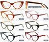 Recentste Optisch Frame 3125 van het Oogglas van Eyewear van de Voorraad van de Acetaat van het Ontwerp van de Manier In het groot