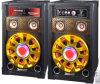 Hohe Leistung beweglicher aktiver PA-Lautsprecher DJ-Ststem (XD10-10)