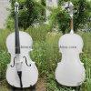 Kursteilnehmer-Cello (YSC002)