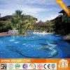 La sirena, delfino, fiorisce il mosaico di vetro della piscina (H420089)