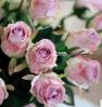 A seda curta das rosas floresce a flor decorativa da flor artificial