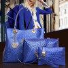 Señora Sexy Handbags Set (SY7087) de la piel del cocodrilo de la alta calidad