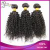 Virgin Brazilian Kinky Curly Cheap 100% Wholesale Human Hair
