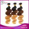 Three Color Body Wave Virgin Brazilian Human Hair Extension