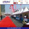 Популярные Good и Strong Exhibition Tent