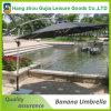 disegno dell'ombrello di Haning del parasole della banana del giardino del patio di 3m