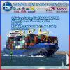 이탈리아에 글로벌 Freight Forwarder From 중국