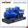 800kw/1000kVAはタイプ生物ガスの発電機50Hz/1500rpmを開く