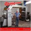 새로운 6개의 색깔 서류상 Flexo 인쇄 기계 기계장치 (CH886)