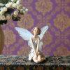Ornement réglé de jardin de Dollhouse de pot d'usine de figurine féerique