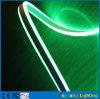 훈장을%s 깜짝 놀라게 하는 110V 두 배 옆 녹색 LED 네온 유연한 지구