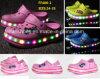 OEMの子供のフラッシュ明るいライトLEDは蹄鉄を打つ庭の靴浜の靴(FF406-1)に