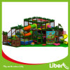 Big Slideの子供Indoor Play Park