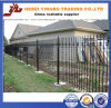 Ornametal Steel Fencing con Powder Coated e Galvanized
