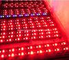 12W Waterproof IP67 Ultra Bright Linear LED Inground Light