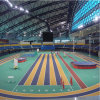Edificio de la estructura del marco de acero para el gimnasio