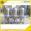 Fermentador cónico do equipamento de uma fabricação de cerveja de 1000 litros