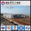 Gruppo di lavoro chiaro della struttura d'acciaio della Cina (SSW-302)