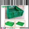 大きいチェーン店のプラスチック野菜大箱
