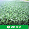 per il PE Artificial Turf (ANC-15A) di Hockey Field Allmay Popular 25mm