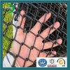 Fabbrica Directly Supply Vinyl Coated Black Chain Link Fence con Cheap