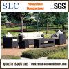 Il sofà di svago ha impostato/il sofà sezionale del rattan stabilito mobilia del rattan (SC-B1007)