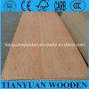 Folha estratificada da madeira compensada de China para a mobília