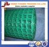 BerufsManufacture für PVC Coated Welded Wire Mesh in Rolls (YB-13)
