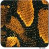 Película dos gráficos do projeto amarelo da pele de serpente Tsh1208 hidro