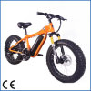 Fat Tyre Wheel (OKM-274)를 가진 DIY Electric Snow Bike
